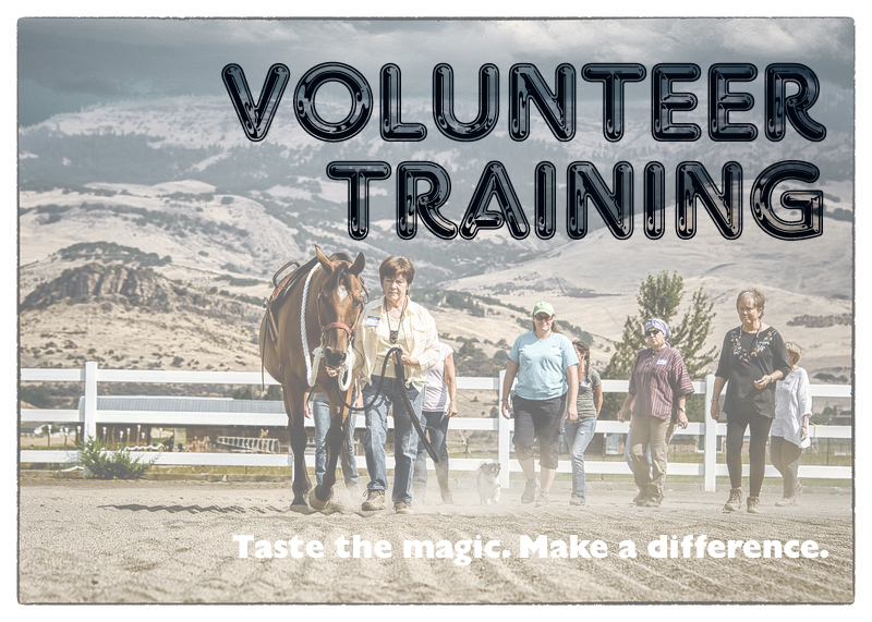 VolunteerTraining