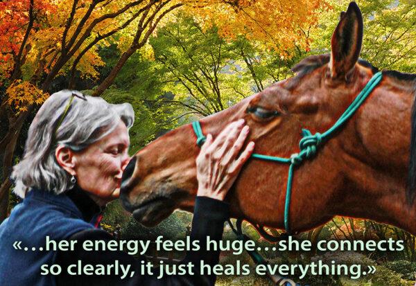 healsEverything