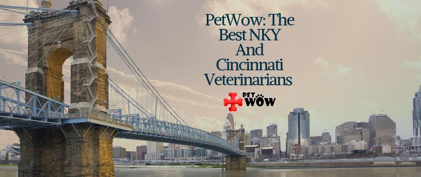 Best Cincinnati & Northern Kentucky Veterinarians - PetWow