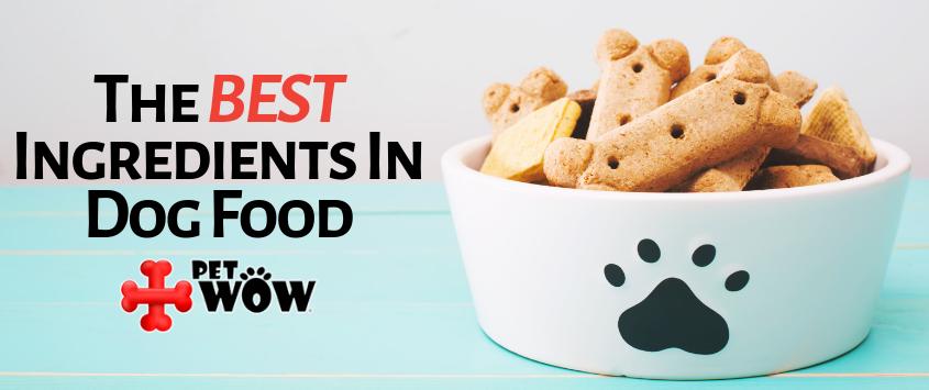 Dog Food Ingredients - PetWow
