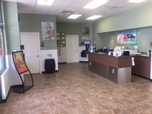 Veterinary Services Near Me - PetWow