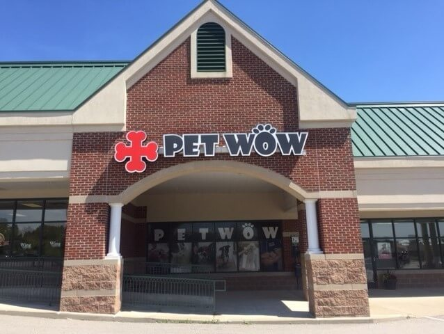Veterinary Care - Pet Grooming Near Me - PetWow