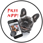 PetWow App - Mobile Pet Services Near Me - PetWow