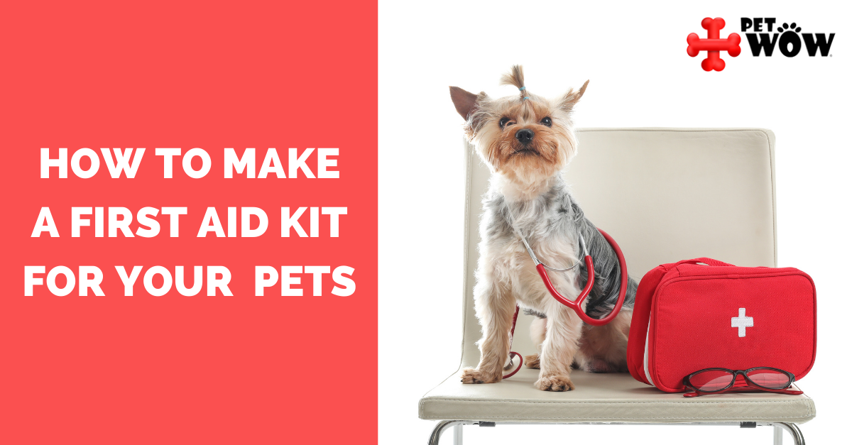 How To Make A First Aid Kit For Your Pets