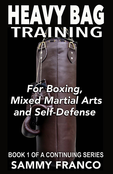 Boxing Equipment & Martial Arts Supplies