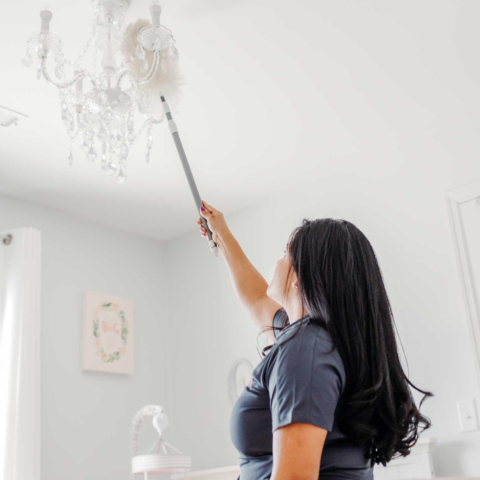 Plum Pristine Cleaning
