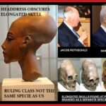 elongated-skulls-and-the-ruling-class