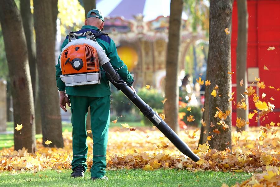 Using and Choosing a Leaf Blower