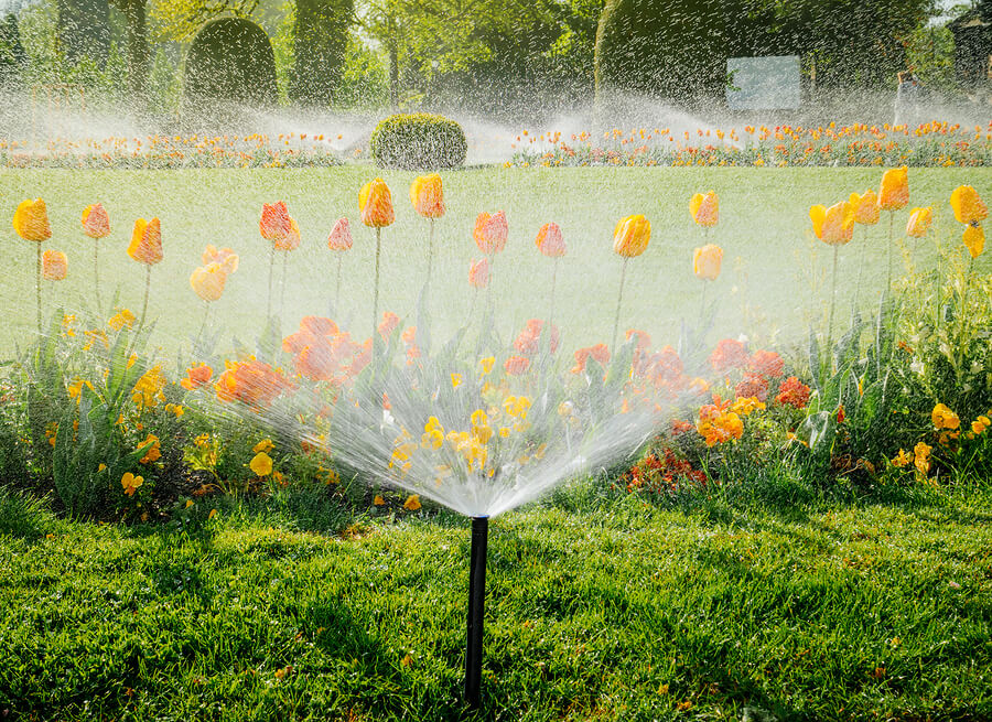 6 Common Sprinkler System Problems
