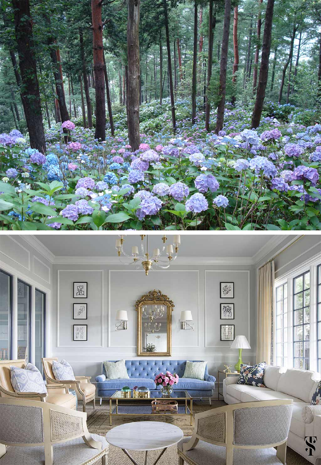 Hydrangeas, forest, Japan. Color in nature. Chic dental office by Summer Thornton Design