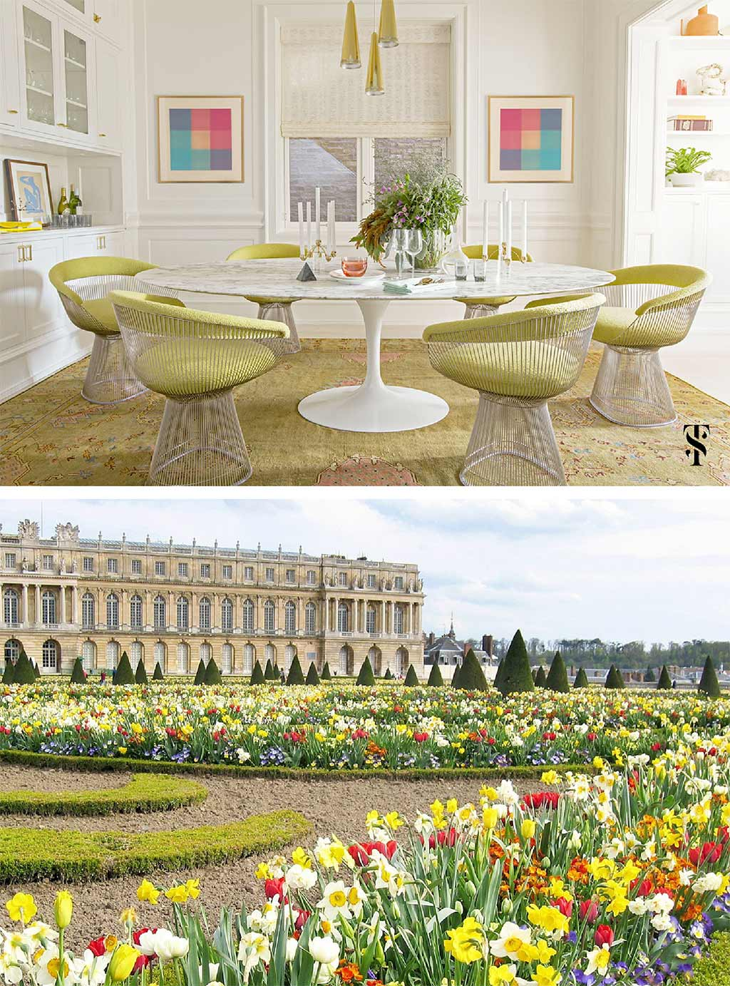 Lincoln Park dining room, chartreuse, by Summer Thornton Design. Gardens at Chateau de Versailles, France, daffodils, tulips, trees, Trover, Mark Rentz.