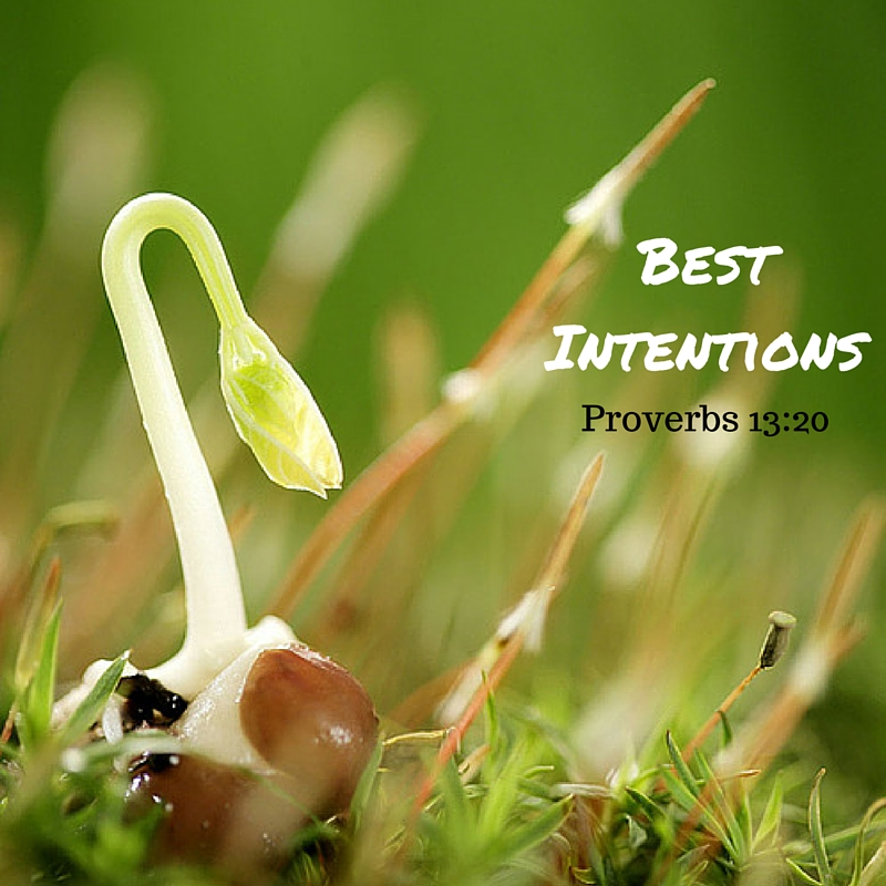 Best Intentions1