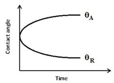 Dynamic Contact Angle Behavior