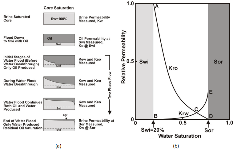 (a) Unsteady State Water Flood Proceudre, (b) Typical Relative Permeability Curve