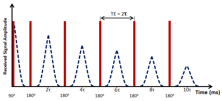 CPMG Pulse Sequence