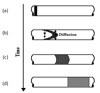 Development of the Mixing Zone as a Function of Time During Laminar Flow in a Capillary (After Nunge and Gill, 1970)
