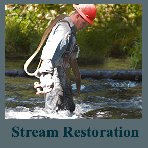 Stream Restoration home button