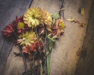 Wrongful Death of a Child Divorced Parents
