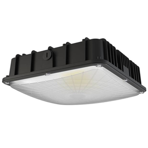 LED Canopy Light Part Number 51410