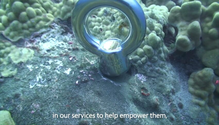 Customer story: Jack's Diving Locker