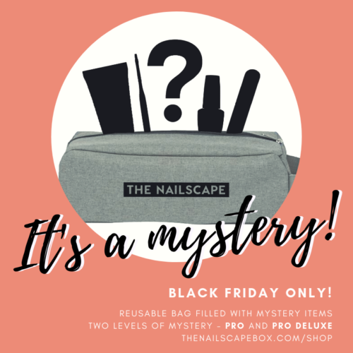 the nailscape mystery bag