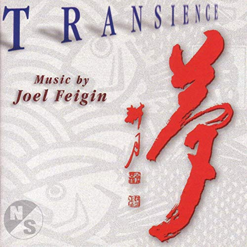 Transience: Music of Joel Feigin
