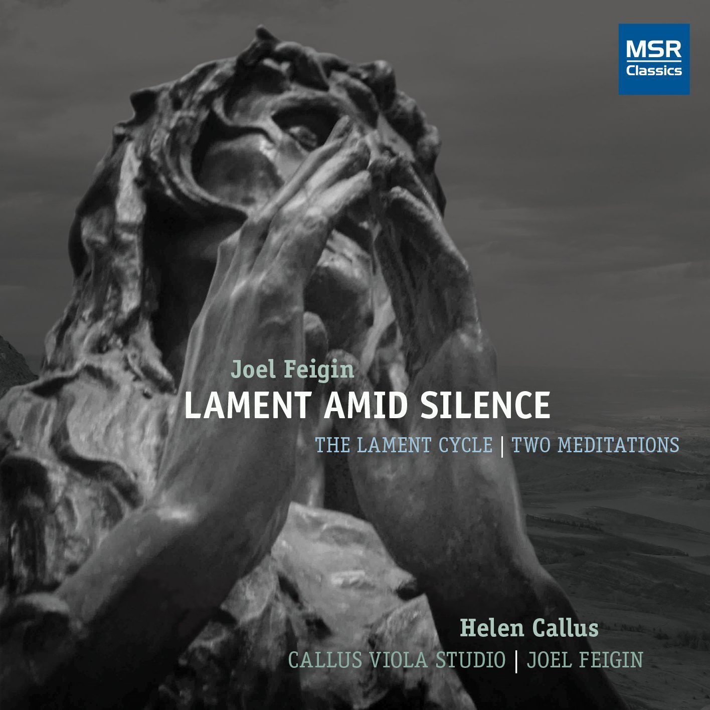 Joel Feigin: Lament Amid Silence