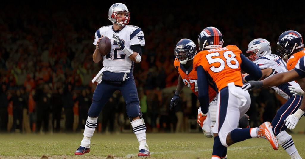 Brady en la bolsa de protección