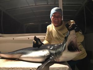 goddess charters shark caught dec 2017
