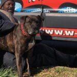 Homeless Atlanta-Man Rescues All Animals from Burning Shelter
