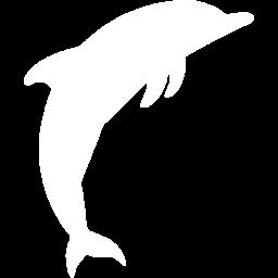 dolphin-2-256
