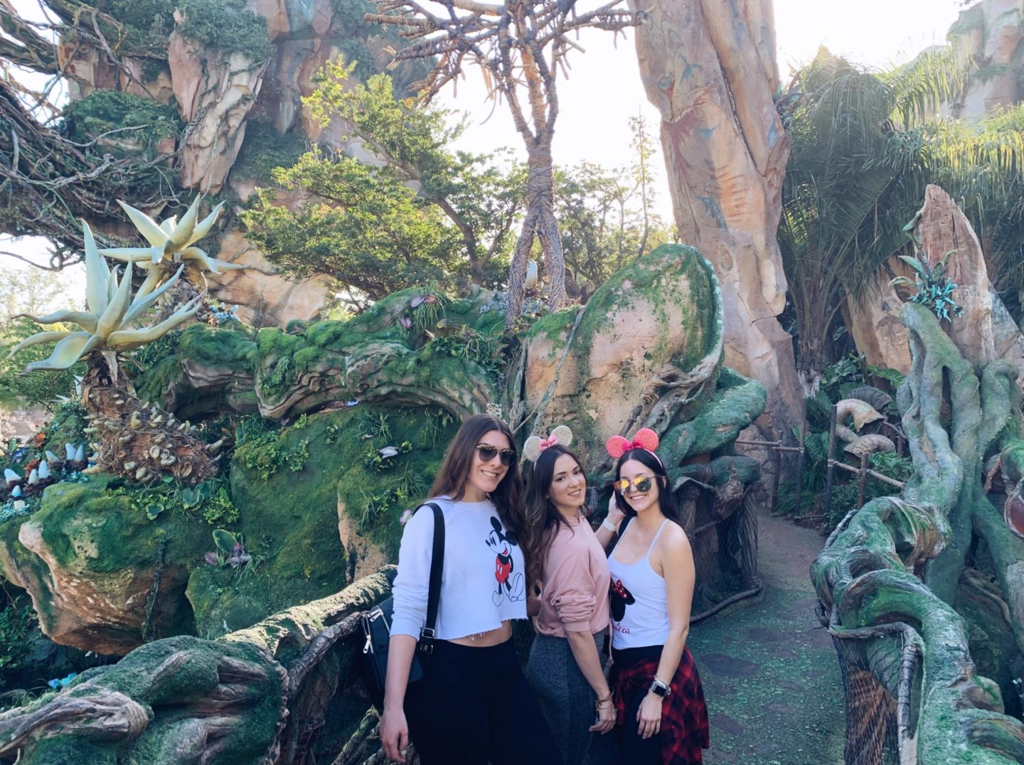 How to do four Disney parks in one day
