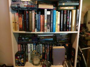 Basement Bookshelves (middle shelves)