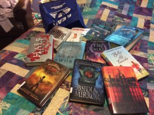 Summer Reading (from 1 of my libraries) -- kept in a bag because there is no room on the bookshelves.