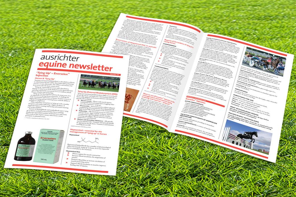 Ausrichter newsletters