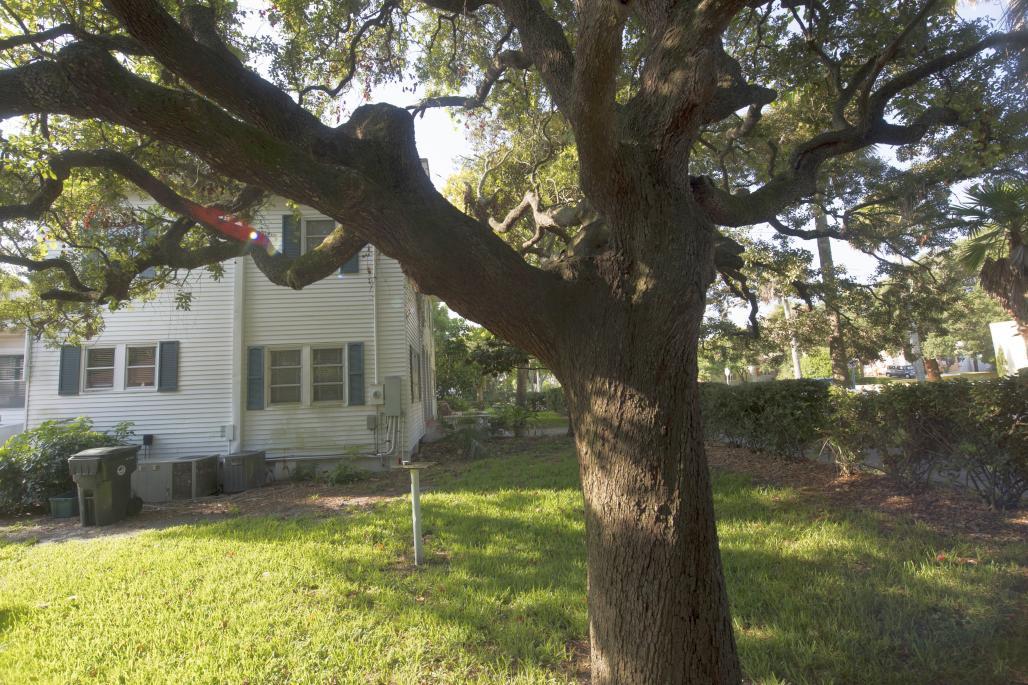 Peabody House Backyard 2