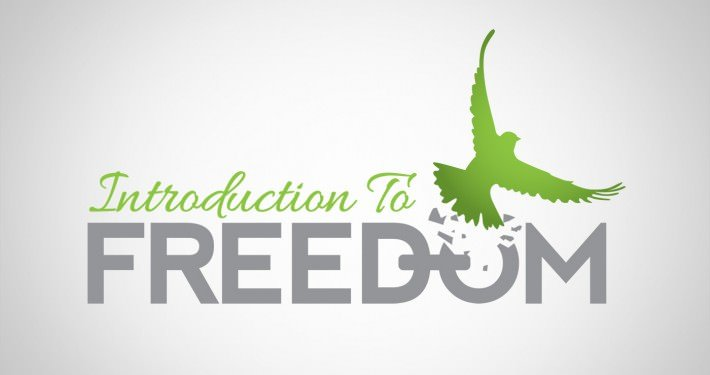 Edmonton Graphic Design | Introduction to Freedom Logo