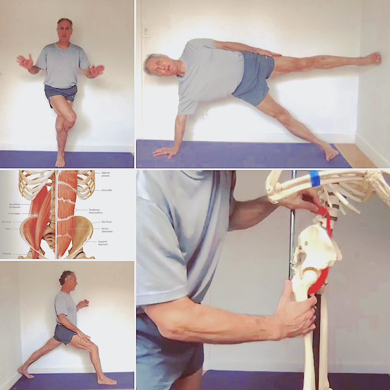 Iyengar Anatomy Series: Healthy Hips, Knees and Shoulders with Roger Cole, Ph.D