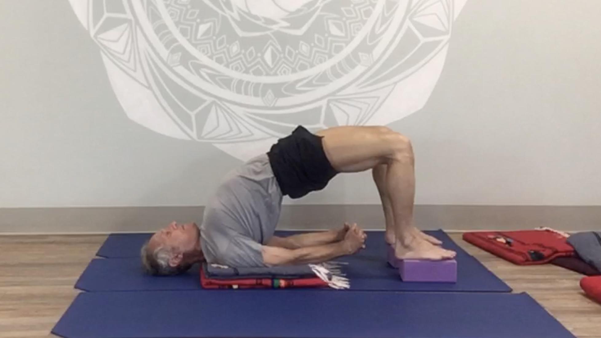 Iyengar Yoga Anatomy Series with Roger Cole