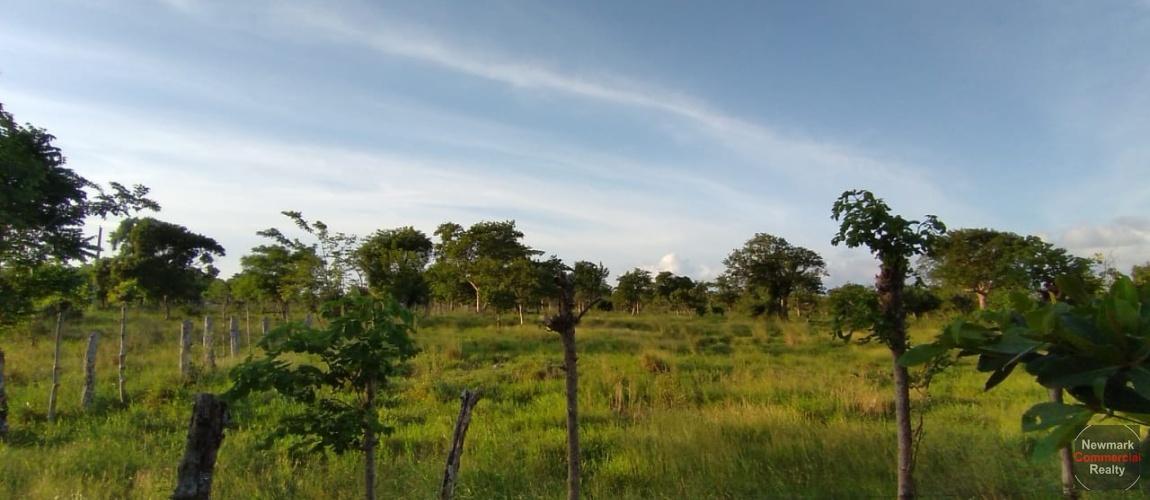 land, terreno, lote, cabrera, ocean front, rio san juan, puerto plata, sosua