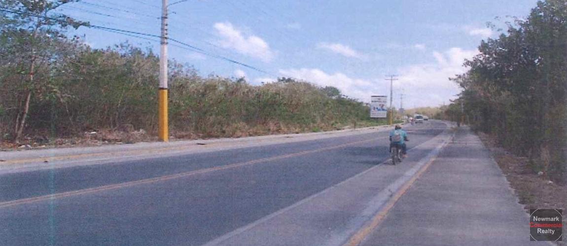 terrenos, tierras, land, lote, macao, puntacana, bavaro, dominican republic, republica dominicana, boulevard turistico barcelo boulevard bavaro boulevard