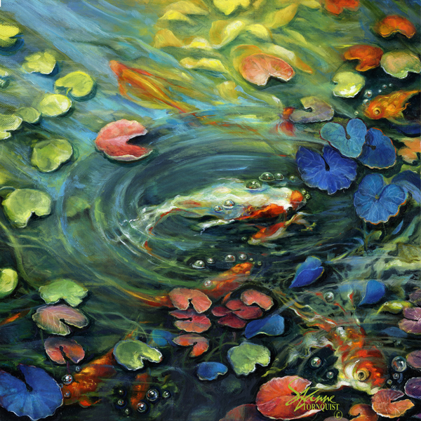 koi-fish-in-a-pond-web