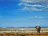 lonley-elephant_1