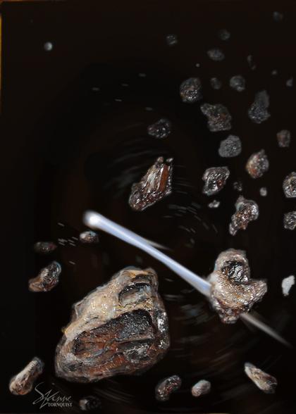 haleys-comet-web