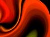 poppy-web