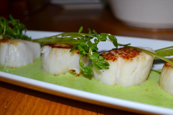 CoopersMill_Scallop