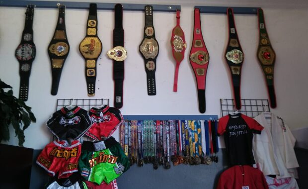 Martial Arts Champion Belts