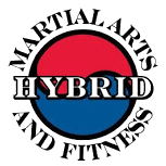 Hybrid Martial Arts and Fitness Chicago
