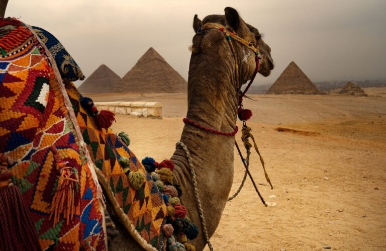 After pandemic Travel: 2020 Is the Year to Visit Cairo