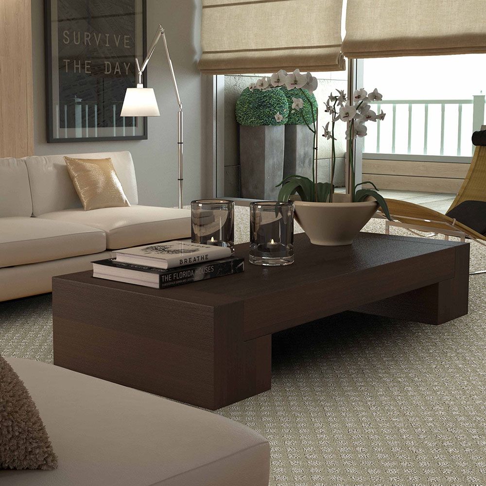 Lexmark Carpeting at River's Edge Home Center
